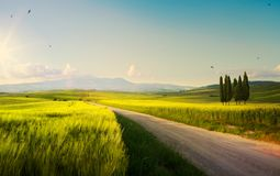 Spring farmland and country road; tuscany countryside rolling hills stock photos