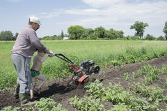In the spring of father and son plowing the ground in the garden Stock Photography