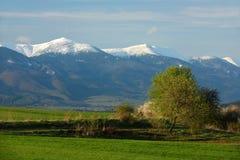 Spring, Fatra Mountains, Slovakia Stock Photos