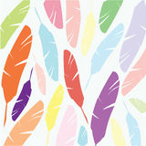 Spring feathers on background Stock Images