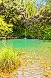Spring fed pool on the road to Hana - Maui Stock Photos