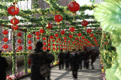 In the Spring Festival of China royalty free stock photography