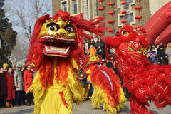 The Spring Festival coming Royalty Free Stock Photography