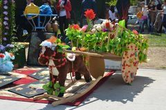 Spring festival of flowers, school festival in Baku city Stock Images