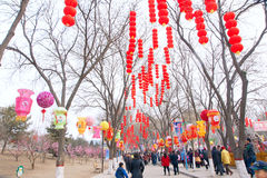 Spring Festival Stock Photos