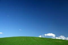 Spring field