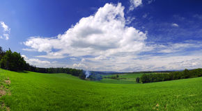 Spring field Stock Photography