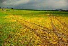 Spring field. Muddy field in spring period Stock Photos