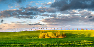Spring field. And beautiful clouds after the front passes through the atmospheric Stock Photography