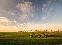 Spring field. And beautiful clouds after the front passes through the atmospheric Royalty Free Stock Image
