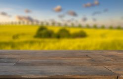 Spring field blurred background of rural landscape  and desk Royalty Free Stock Photo