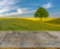Spring field blurred background of rural landscape  and desk Stock Photo