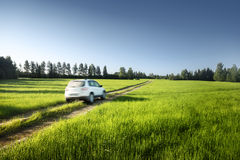 Spring field and blurred car on ground road Stock Photography