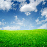 Spring field and clouds Royalty Free Stock Photo