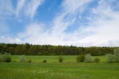 Spring field, forest, sky Stock Image