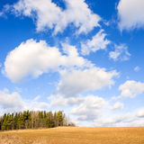 Spring field and sky Royalty Free Stock Images