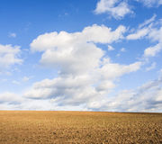 Spring field and sky Royalty Free Stock Photo