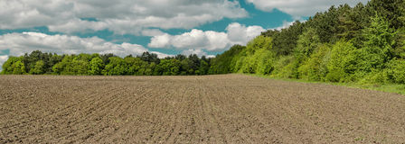 Spring field before sowing Royalty Free Stock Images