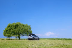 Spring field and sport car Royalty Free Stock Photography