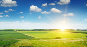 Spring field and sunrise on blue sky Stock Image