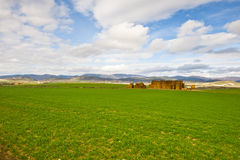 Spring Fields Stock Photography