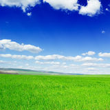 Spring fields Royalty Free Stock Image