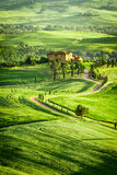 Spring fields and meadows in Italy Royalty Free Stock Photo
