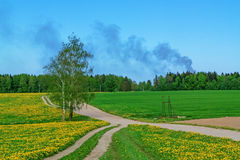 Spring fields and sand road. Royalty Free Stock Photography