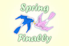 Spring Finally. Illustration with kissing swallows and Spring Finally text Royalty Free Stock Images