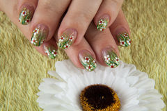 Spring fingernails with a flower and on the green towel, comomile Stock Photography