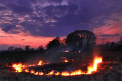 Spring fires in a field. At sunset Stock Photos