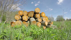 Spring firewood log stack and clouds. Timelapse 4K stock footage