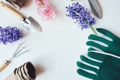 Spring flat lay with preparations for garden work and transplanting. Gloves, tools, peat pots and flowers on white background with empty space Stock Photos