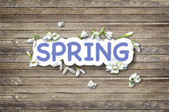 Spring Flickering Lights. Flickering Lights.  Can be used for wallpaper, pattern fills, web page background,surface textures Royalty Free Stock Photography