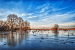 Spring flood in the field Royalty Free Stock Images