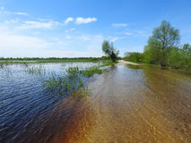 Spring flood in fields, Lithuania Royalty Free Stock Image