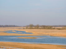 Spring flood in fields Royalty Free Stock Photo