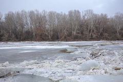 Spring flood, ice floes on the river Stock Photo