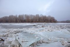 Spring flood, ice floes on the river Stock Photography