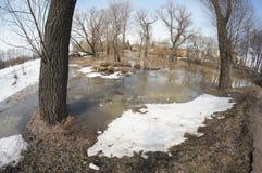 Spring flood Stock Photography