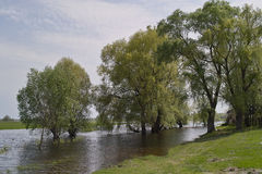 Spring flood on meadow Royalty Free Stock Images