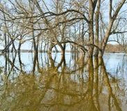Spring flood Royalty Free Stock Image