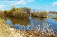 Spring flood on river. Spring flood in river on background blue sky with white cloud Royalty Free Stock Images