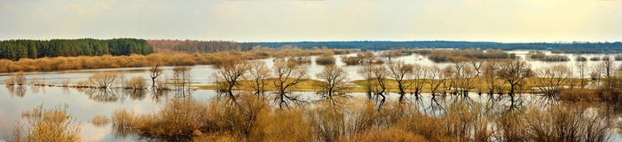 Spring flood. On river Berezina. Stitched Panorama royalty free stock images