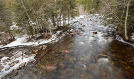 Spring flood. In the river  in the  mountains Royalty Free Stock Photos
