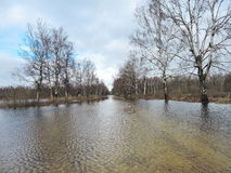 Spring flood road Stock Photos