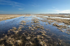 Spring flood in steppe Stock Images