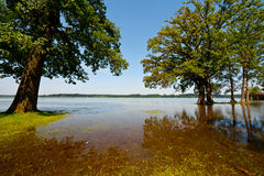 Spring Flooding. Of the Lake Simssee in Bavaria, Germany stock photo