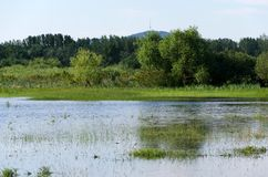 Spring flooding. Flood basin of the Tisza River in Tiszalok, Hungary. Hungarian countryside. Overflow of water from the river. Blue sky. Tokaj Hill and a TV royalty free stock photos