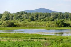 Spring flooding. Flood basin of the Tisza River in Tiszalok, Hungary. Hungarian countryside. Overflow of water from the river. Tokaj Hill and a TV tower in the stock photography